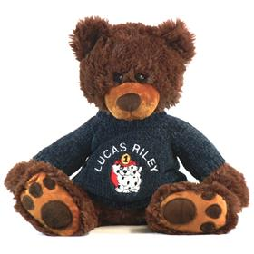 this is an image of a personalised teddy bear from My Teddy mojo brown