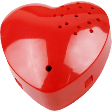 Recordable+Voice+Box+Heart+Shaped